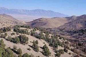 Cedar Mountain Wilderness in northern Utah, USA.