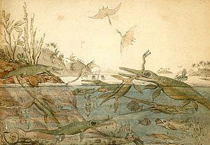 Paleoart, Duria Antiquior