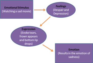 Motivation and emotionTextbookEmotionFacial expression  Wikiversity