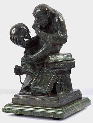 Hugo Rheinhold's Affe mit Schädel (by Darwin M...