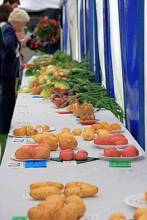 English: The Produce, Osmotherley Show