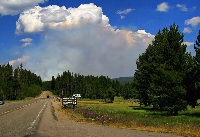 https://i2.wp.com/upload.wikimedia.org/wikipedia/commons/thumb/a/a1/Wildfire_in_Yellowstone_NP_produces_Pyrocumulus_cloud.jpg/800px-Wildfire_in_Yellowstone_NP_produces_Pyrocumulus_cloud.jpg