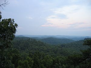 English: View from Tater Knob in the Daniel Bo...