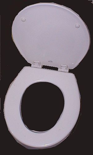 English: Large image of toilet seat