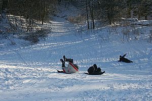 English: Who Needs a Fancy Sledge? Family fun ...