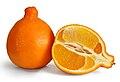 Minneola fruit 3.jpg