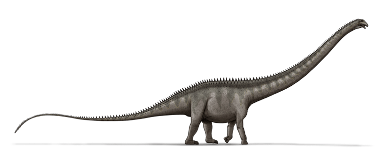 File:Supersaurus dinosaur.png