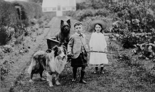 https://i2.wp.com/upload.wikimedia.org/wikipedia/commons/thumb/a/a5/Boy_and_girl_with_two_dogs_and_a_wagon.png/500px-Boy_and_girl_with_two_dogs_and_a_wagon.png