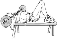 Renforcement MusculaireExercicesExercices Du Membre
