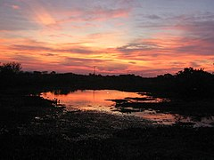Pôr do sol no Pantanal.