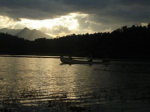 Fishing in the Morning at Wayanad, taken by my...