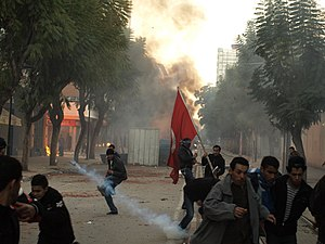 The police often fired tear gas grenades not i...