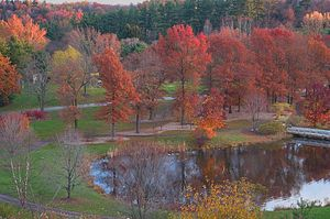 English: :Houston Pond of F. R. Newman Arboret...