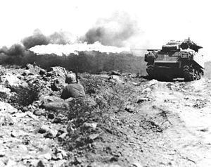 Several M4A3 Sherman tanks equipped with flame...