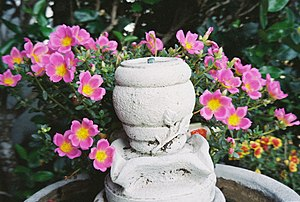 A fountain on a bird bath, with flowers.