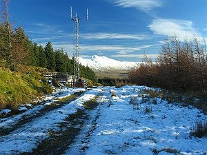 English: Forest Track and Communications Mast ...