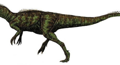 Chilantaisaurus.jpg