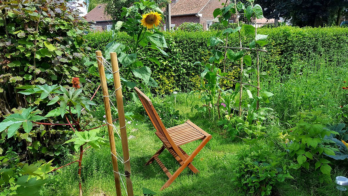 pergola de jardin