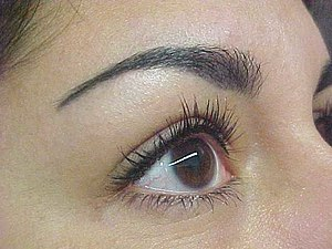 English: Permanent Makeup - Eyebrow Procedure