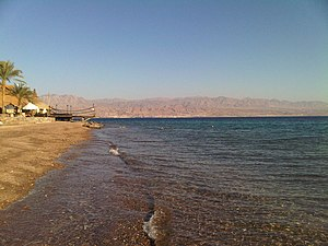 English: Red Sea stony beach in Taba, Egypt (v...