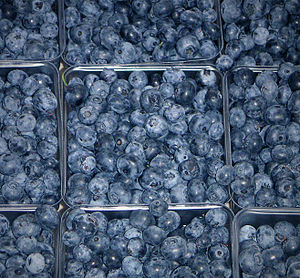 Blueberries at Farmer's Market