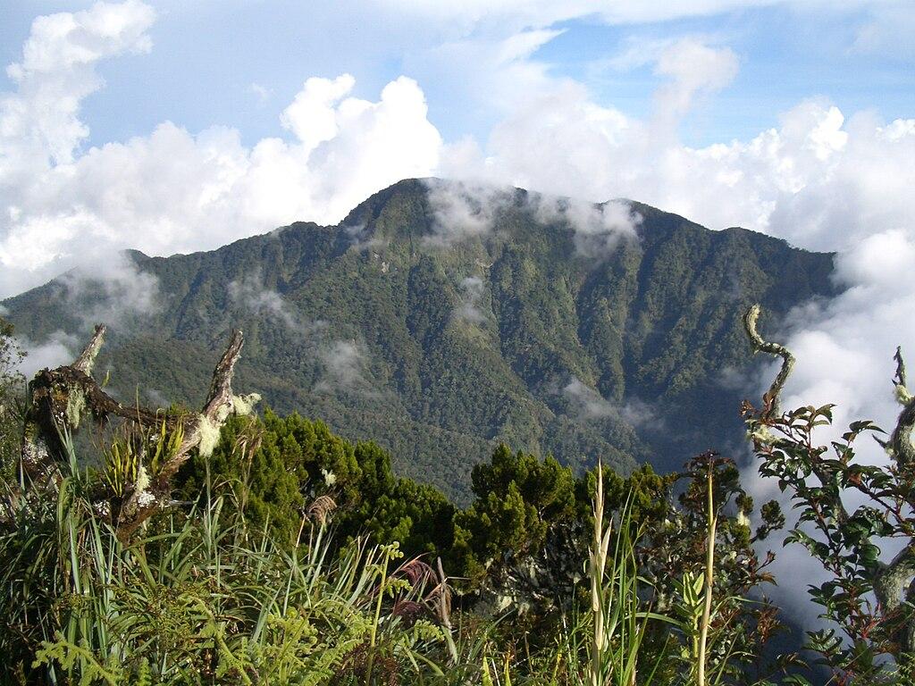 Mount Dulang-Dulang in Bukidnon
