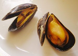 The flesh of cooked mussels can be orange, or ...