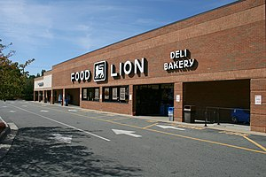 Food Lion grocery supermarket, the anchor stor...
