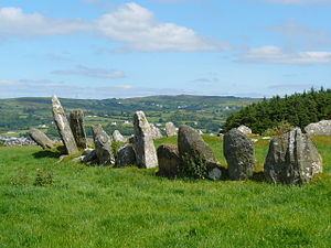 Beltany Stone Circle, from its west side, sout...