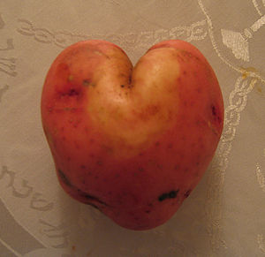 English: A heart shaped potato.