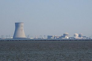 Entire PSE&G nuclear complex (which contains b...