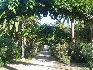 Espaol: Paseo del parque