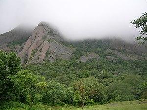 Savandurga hillside forest, Bangalore, India