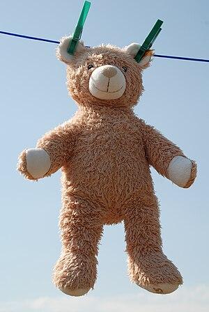 teddy bear at clothesline