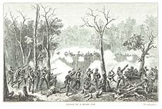 Image result for free to use image of maori wars