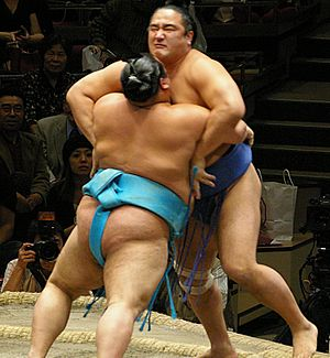 A sumo bout between aminishiki and toyonoshima...