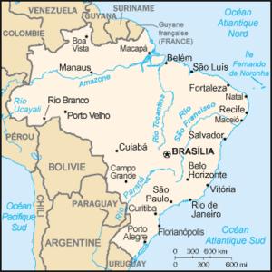 cet article présente un résumé de l histoire du brésil