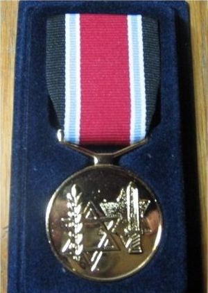 Fighter against the Nazis Medal