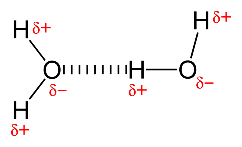 File:Hydrogen-bonding-in-water-2D.png