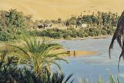 Oasis in the Libyan part of the Sahara