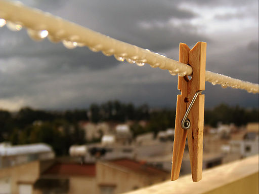 Clothespin after the rain