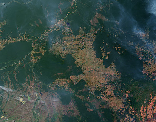 Satellite image of fires and deforestation on the Amazon frontier, Rondonia, Brazil (click to see more)