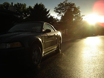 Mustang Car after Rain with Sun