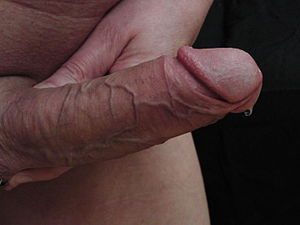 Mein erster Blowjob Sexy Gay Stories