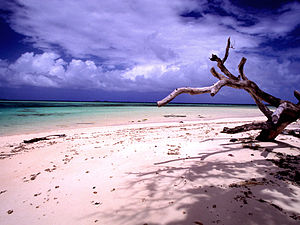 Laura Beach, the Marshall Islands