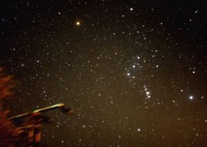 Photography of constelation Orion.