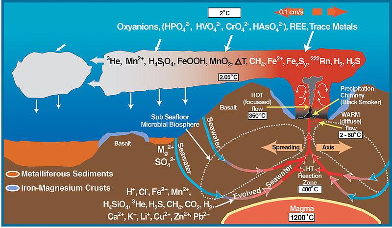 File:Deep sea vent chemistry diagram.jpg