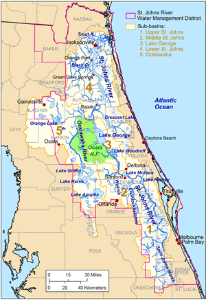 Map of the St. Johns River drainage basin.