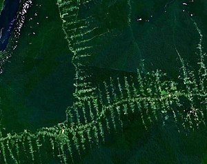 Deforestation in Amazonia, seen from satellite...