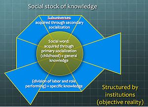 English: Underlying structure of the social co...